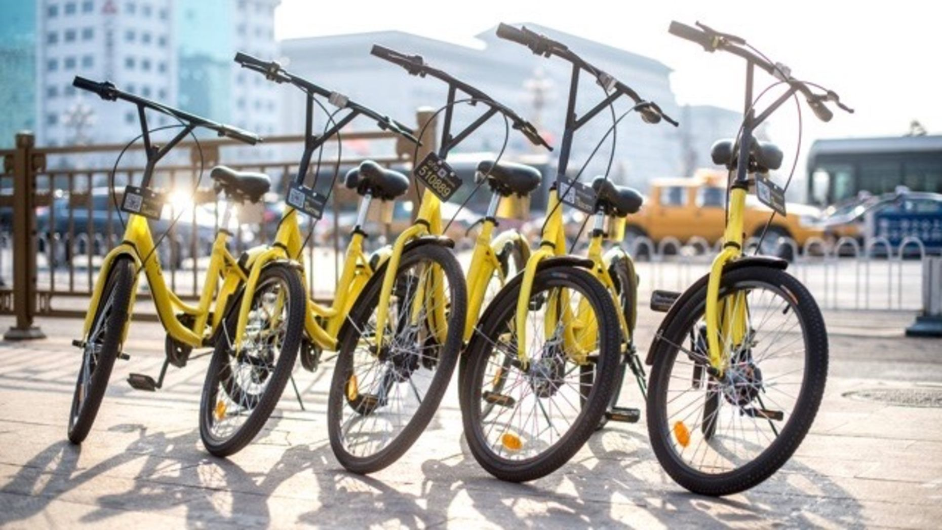 Ofo bicycles available for rent. Photo by Ofo.