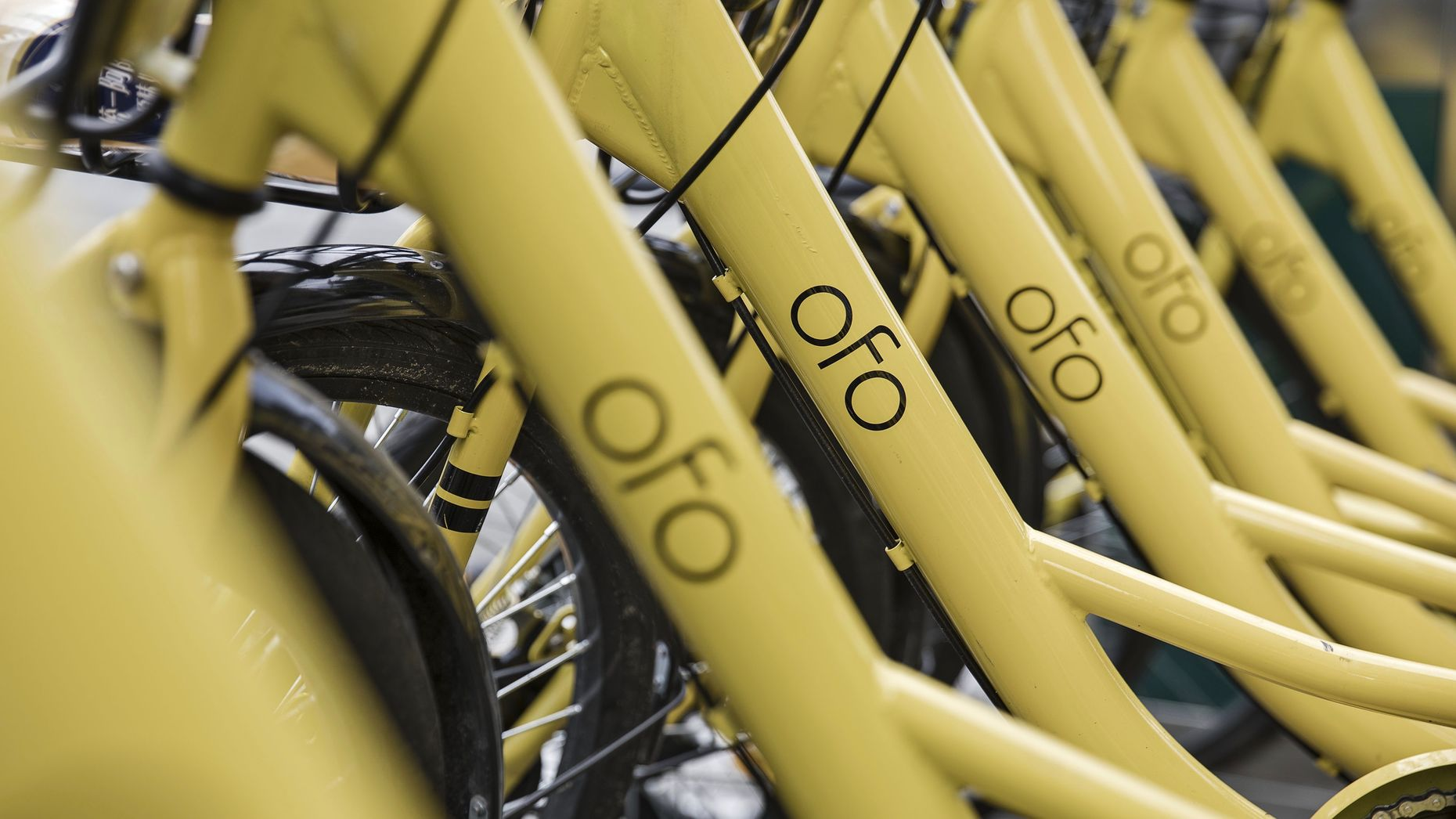 Ofo bikes parked in Shanghai last year. Photo by Bloomberg.