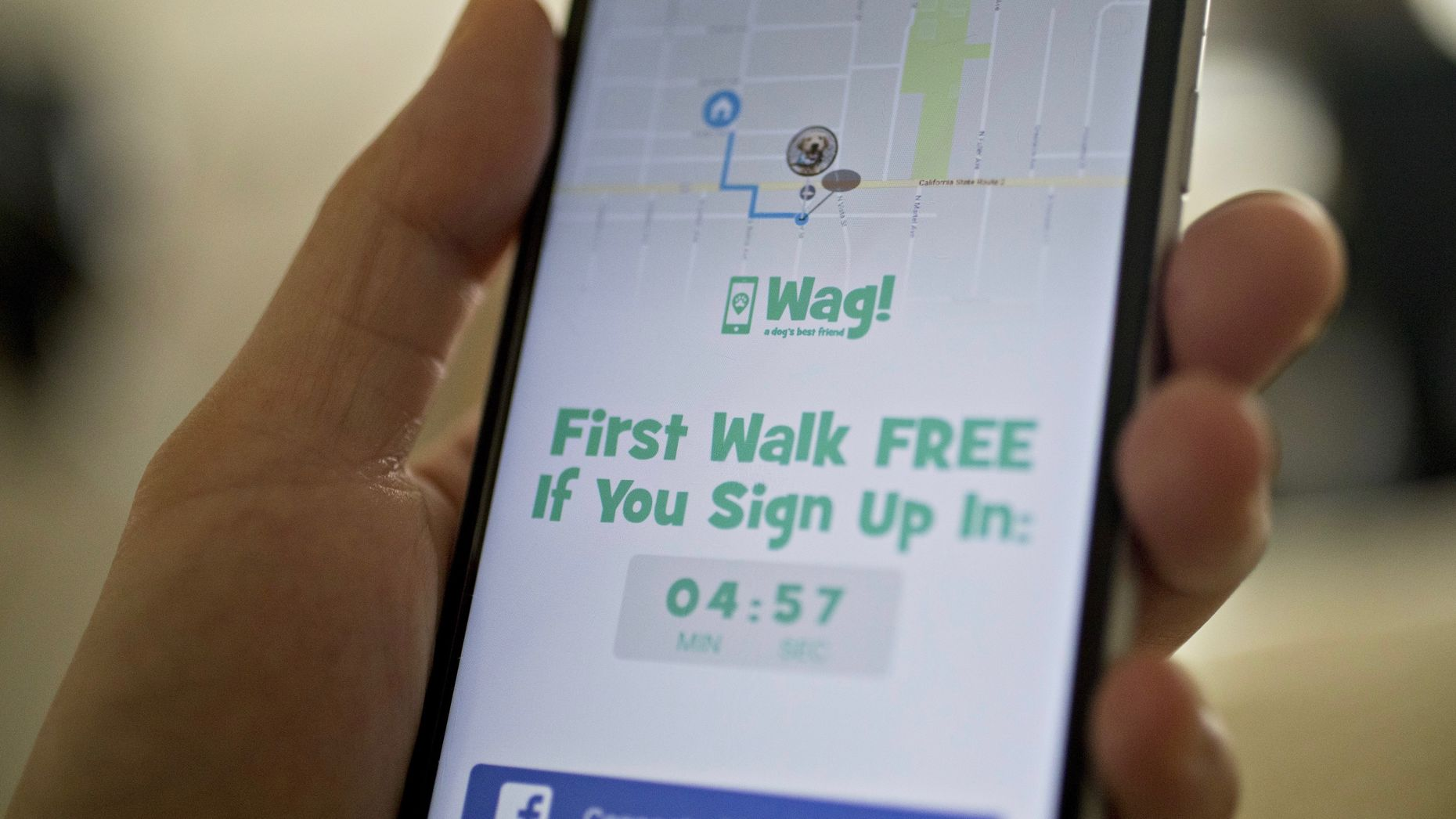 Wag's app. Photo by Bloomberg.