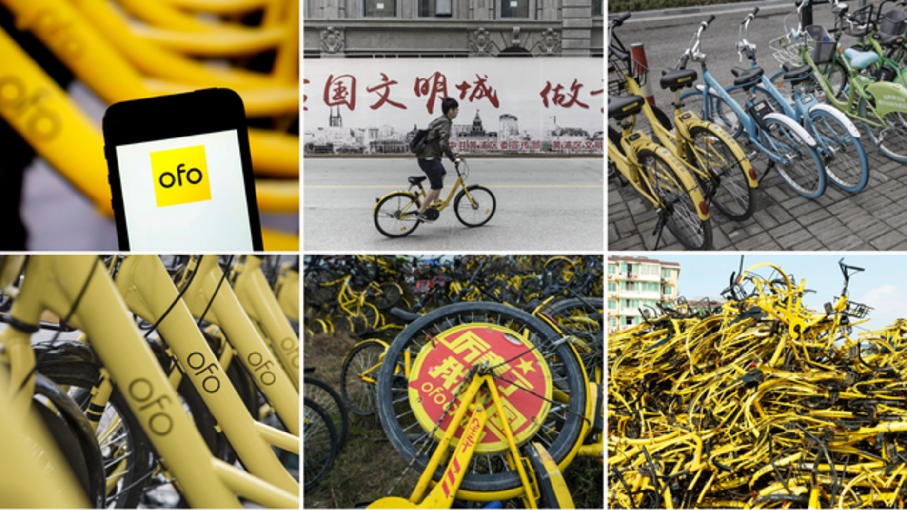 Photos by Bloomberg and AP