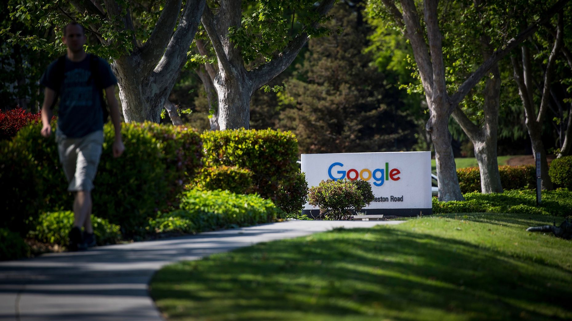 Google's Silicon Valley campus. Photo by Bloomberg.