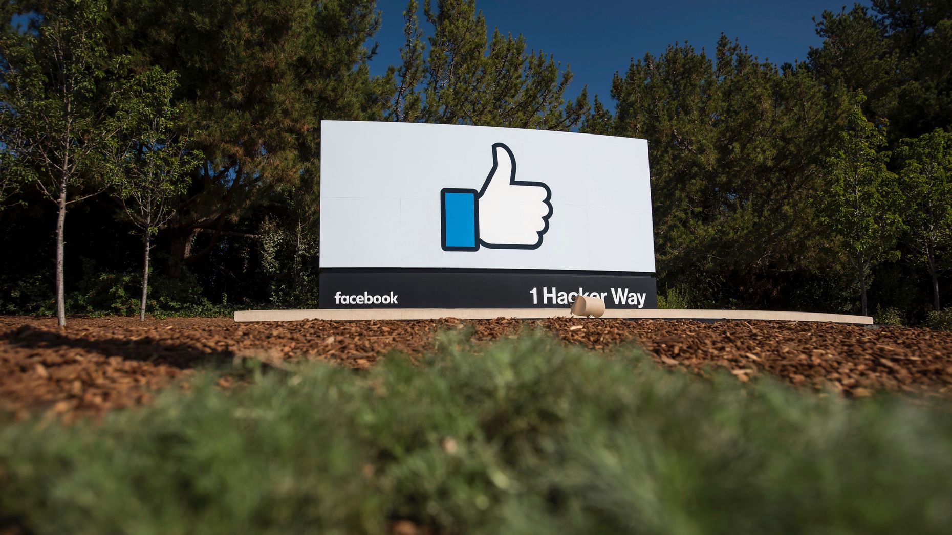 Facebook's campus in Silicon Valley. Photo by Bloomberg