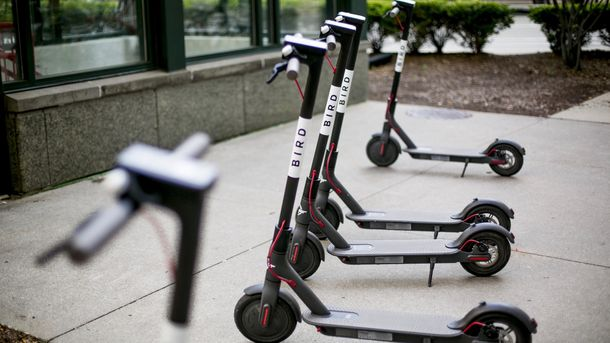 Bird Lays Off Dozens of Employees