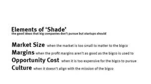 Startups Need Shade—Not Just Time—To Grow